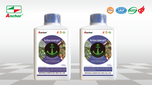 Root disease treatment agent A+B